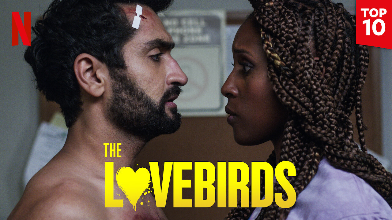 The Lovebirds on Netflix Canada