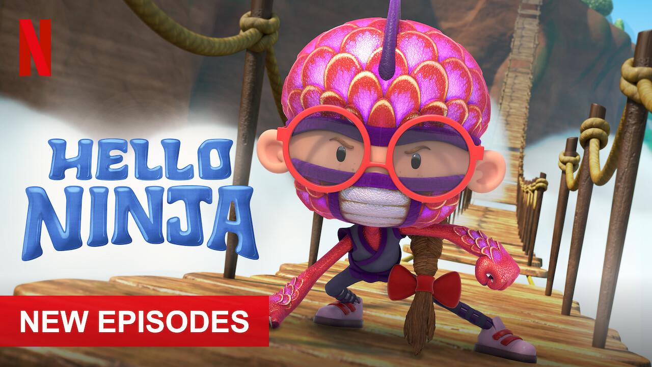 Hello Ninja on Netflix Canada