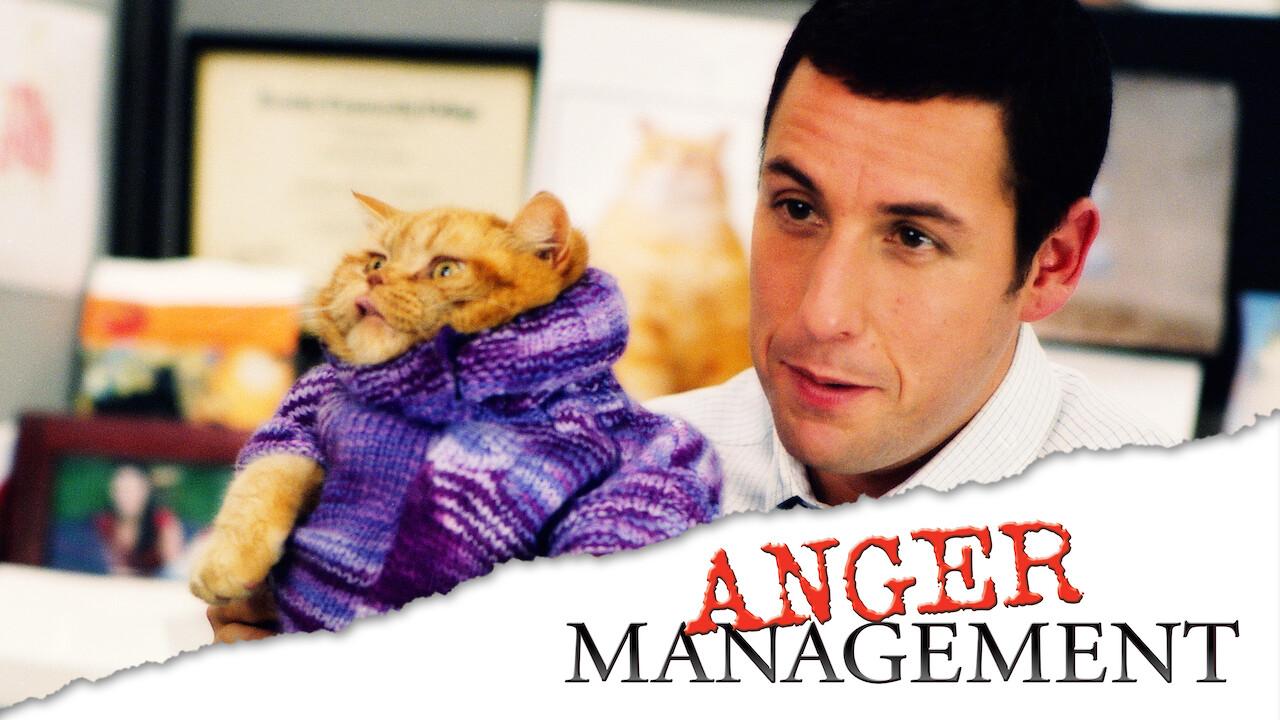 Anger Management Netflix
