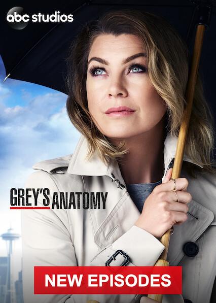 Grey's Anatomy on Netflix Canada