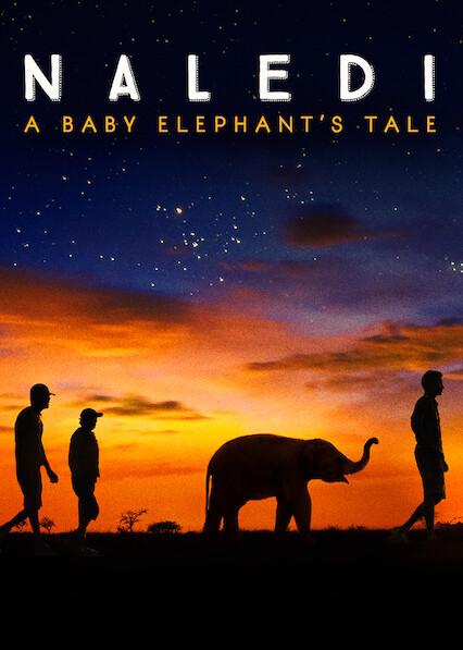 Naledi: A Baby Elephant's Tale